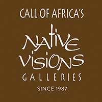Native Visions Galleries logo